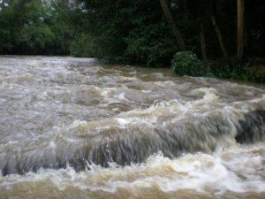 kuruah_river_4_20090414_1084268452
