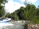 macleay_and_hastings_7_20090414_1541049423