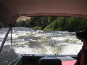 riverina_17_20090414_1769824822