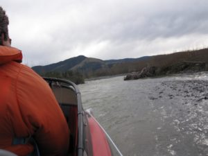 upstream-ashley-river-800x600